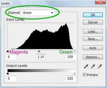 Adjusting Green Levels in Photoshop