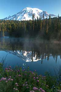 Mt. Rainier from Reflection Lakes