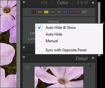 Lightroom panel group context menu