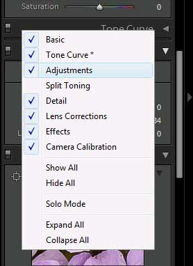 Lightroom panel context menu
