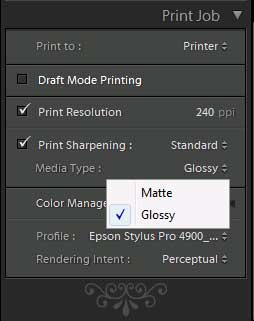 Lightroom Print Sharpening