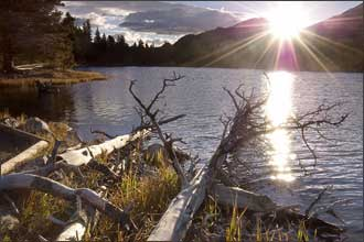 Shore logs lead you to the sunrise in Rocky Mountain National Park