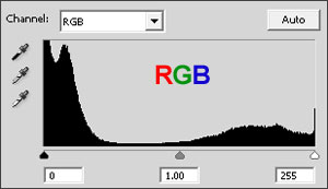 If anything, the composite (luminosity) histogram looks somewhat underexposed