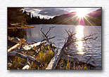 Sprague Lake Sunburst